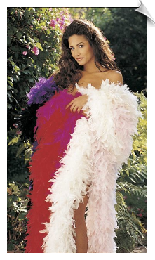 Sexy Feather Boa Fashion Accessories