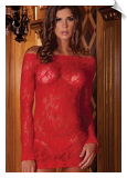 Long Sleeve Floral Lace & Mesh Chemise Dress